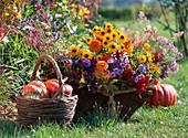 Basket with autumn flowers, Rudbeckia 'Marmelada', asters