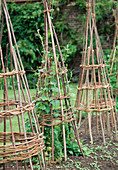 Climbing frame made of willow branches