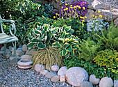 Shade flowerbed