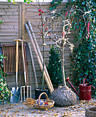 Garden tools for planting trees