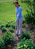 Young woman chopping in the perennial flowerbed