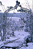 View through rose arch in snowy garden