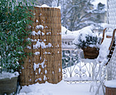 Winter balcony, plants sintered with bamboo mat