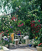 Rose arbor with branches of roses, bushes and hanging baskets