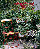 Plant stairs with strawberries