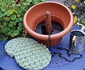 Irrigation types for hanging baskets, irrigation mats