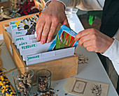 Card box with seed bags sorted by seed month