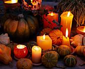 Zierkürbisse und Kerzen / Halloween