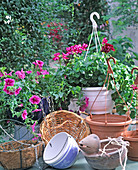 Various hanging wire basket, plastic hanging baskets with water storage