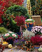 Autumn Arrangement, Laurus, Erica Stem, Brassica