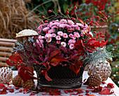Iron bowl with Dendranthema autumn chrysanthemum, Calluna vulgaris broom heath