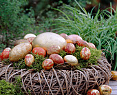 Willow branches wreath filled with moss and ostrich eggs