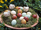Easter basket with colored eggs and chicks