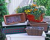 Material overview of various window boxes
