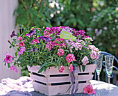 Basket with balcony flowers as a gift