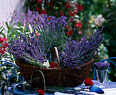 Basket with lavandula (lavender), rose petals, anthemis