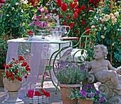 Rosa 'Flora Romantica', white (shrub rose)
