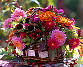Basket with sallistephus (China aster), rudbeckia (sun hat) fruits, crategus (hawthorn)