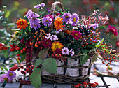 Wicker basket, asters blossoms, chrysanthemum autumn chrysanthemums, viburnum