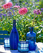 Blue Glass Bottle, Zinnia (Zinnia), Ageratum (Liver Balm)