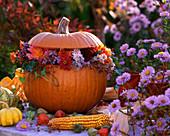Pumpkin as vase