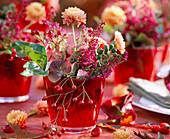 Rose (rosehip), Chrysanthemum, Erica (heather), Hedera