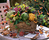 Cynara scolymus artichoke, Chrysanthemum, Brassica cabbage, Skimmia, Malus