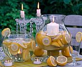 Citrus limon (lemon) on a trellis in a square pot