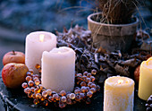 Kerzen mit Rauhreif, Malus / Äpfeln, Acer / Ahornlaub