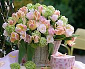 Tulipa / Tulpenstrauß in Pastellfarben, Viburnum opulus 'Roseum'