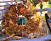 Blätterkranz von Acer (Ahornblätter)