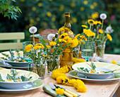Taraxacum (dandelion) as decoration