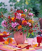 Phlox, Calendula (marigold)