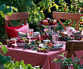 Fruit table with prunus, peaches, malus, ribes