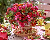 Aster (wild chrysanthemum), Tagetes (Marigold)