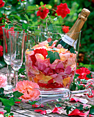 Champagne cooler with pink (rose) petals