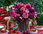 Dahlia ball dahlia, Antirrhinum snapdragon, Salvia sage, Amaranthus