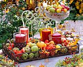 Metal tray with lanterns, Cucurbita pumpkins, Chaenomeles ornamental quinces