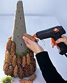 Pine pyramid, Picea (pine) cones, oasis cone moss