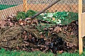 Compost of leaves, grass clippings and kitchen waste in composting