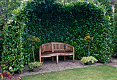 Garden bench under Prunus laurocerasus 'Rotundifolia' arbor