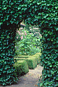 Archway of Hedera helix (ivy)
