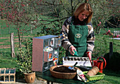 Sowing various types of vegetables in multi-pot plates with a sewing aid
