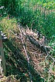Hideaway of branches in the garden