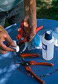 Disinfecting garden shears with 90% alcohol