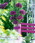 Allium atropurpureum and Allium stipitatum (ornamental onion)