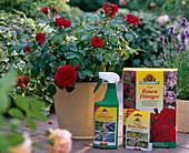 Product intake, rose fertilizer