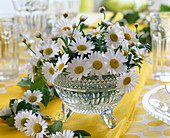 Crystal bowl with Argyranthemum (Marguerite)