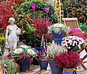 Autumn Arrangement Laurus Laurel, Erica Stem, Brassica Cabbage