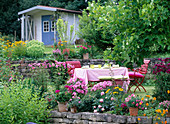 Garden with liriodendron (tulip tree)
